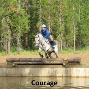Horse jumping near water